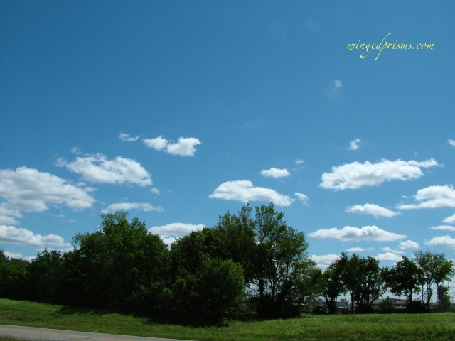 the drive started out with lovely cotton ball clouds