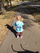 the little bug taking a walk