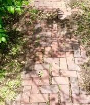 brick work on some sidewalks