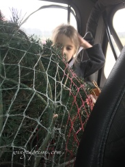 Lu and tree tucked into The Jeep